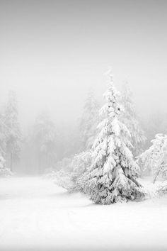 All white everything. (Photo via Flickr: susu_td)