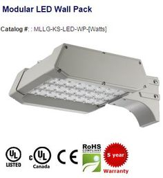 #LED #WallPack replaces up to 750W HID. 2640-26180 #lumens. 100,000 (L70) hours with 5 years #limitedwarranty. IP67 Rated. For more #leddesigns, please visit http://myledlightingguide.com/LED_Wall_Pack-list.aspx | #ledlightimages