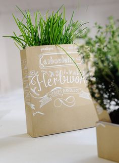 PACKAGING | UQAM: Herbivore | Tiffany Marchis