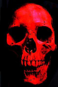 Blood Skull by oneyedemon.deviantart.com on @deviantART