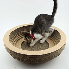 Paper&Wood Ages® Cat Scratcher with Catnip, Scratcher Cat Toy,The scratchers are designed to help your cat scratch where you want it to, and not on the furniture.Helps protect furniture from claw damage. Diy Cat Toys, Pet Toys, Cardboard Cat Scratcher, Cat Towers, Cat Enclosure, Cat Scratching Post, Cattery, Cat Crafts, Cat Supplies