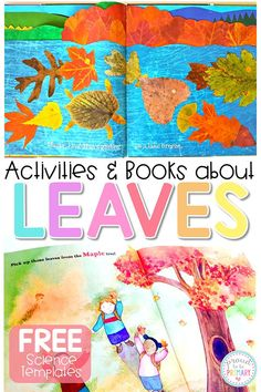 Fall is the perfect time to get outside into nature, explore the changes, and go on a leaf hunt. Read a few of the children's books and use the activities for learning about leaves this autumn in this post. Grab FREE leaf science templates to support your classroom lessons! #fallactivities #leafscience #fallscience #autumnactivities #leafhunt