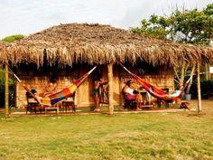 Ecuador hammocks for Saggybunz