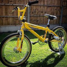Bike Freestyle, Vintage Bmx Bikes, Gt Bmx, Bmx Flatland, Old Scool, Bmx Street, Picture Albums, Bmx Bicycle, Bicycle Design