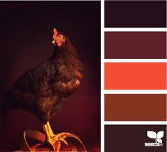 autumn cluck