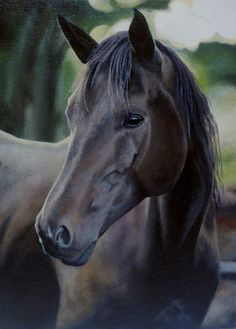 Oil painting- Horse by Toltekia
