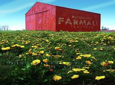 Photo Manipulation-Farmall Tractors