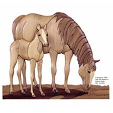 Mare and Foal Intarsia Pattern