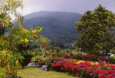 Boquete - Volcanic highlands