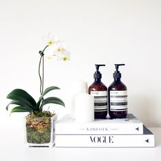 Aesop Skincare | TheLipstickEffect