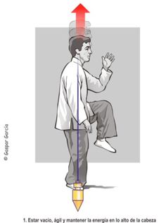 Tai Chi: Os 10 Princípios Básicos / The 10 Basic Principles   Diário de Tai Chi / Tai Chi Diary Qi Gong, Wing Chun, Aikido, Kung Fu, Tai Chi Movements, Tai Chi Moves, Learn Tai Chi, Tai Chi Exercise, Tai Chi For Beginners