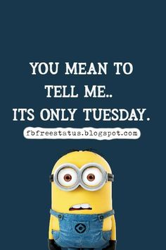 funny tuesday memes Happy Tuesday Meme, Tuesday Quotes Good Morning, Morning Humor, Morning Quotes, Tuesday Motivation Quotes, Its Only Tuesday, Funny Quotes, Funny Memes, Funny Happy