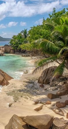 Fancy a romantic honeymoon in the Seychelles? Which Seychelles island to pick an… Fancy a romantic honeymoon in the Seychelles? Which Seychelles island to pick and why Beach Aesthetic, Travel Aesthetic, Vacation Places, Vacation Spots, Honeymoon Destinations, Italy Vacation, Beautiful Places To Travel, Beautiful Beaches, Nature Pictures