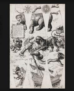 Jan Saenredam, from Celestial Globe Gores for Willem Jansz. Blaeu's Sphaera stellifera. Before 1600.