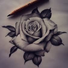 Image result for three black and grey roses drawing tattoo
