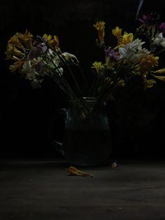 La apertura by Juanjo Mora on 500px