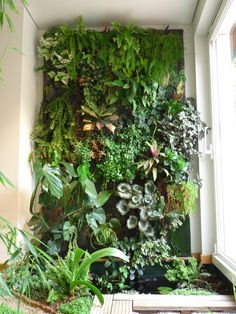 Unusual  Marvelous Vertical Garden Designs To Inspire You  Gardens  With Handsome Success Your Home Vertical Garden With Easy On The Eye Garden Climbing Plants Also Garden Design Gallery In Addition Garden Of Edn And Gardening Clothes Uk As Well As Free Printable Olive Garden Coupons Additionally Beach Hut Garden Shed From Pinterestcom With   Handsome  Marvelous Vertical Garden Designs To Inspire You  Gardens  With Easy On The Eye Success Your Home Vertical Garden And Unusual Garden Climbing Plants Also Garden Design Gallery In Addition Garden Of Edn From Pinterestcom