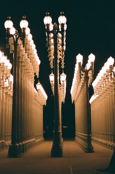 LACMA urban lights