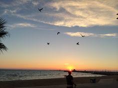 我坐在夕阳里看城市的衰弱