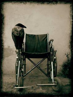 Empty chairs n ravens both creepalicious