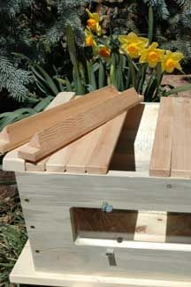 backyard hive - I'm going to do this when the kids get a little older