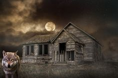 Free Image on Pixabay - Night, Moon, Sky, Wolf, Cabin Night Pictures, Night Photos, Free Pictures, Free Images, Rose Images Hd, January Full Moon, Full Moon Names, Good Night Flowers, Cold Moon