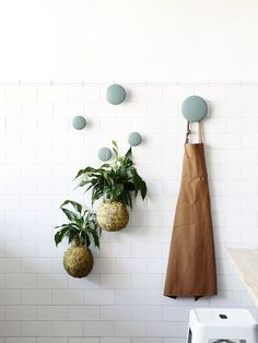 10 clever ways to use Muuto The Dots Coat Hooks in your home Wall Hanger, Wall Hooks, Dots Muuto, Do It Yourself Inspiration, Clothes Hooks, Decorative Hooks, Deco Design, Coat Hooks, Hanging Plants