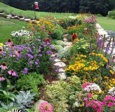 For the side yard, I love this wildflower garden - the varying colors, textures, sizes, walkway, bird feeders, etc.