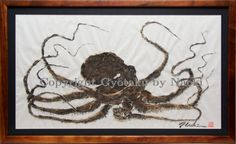 "Little Hawaiian - This small octopus is a true Hawaiian, born and raised in Kaneohe Bay. Framed in solid ""Hawaiian"" Koa wood."