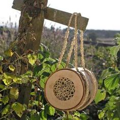 For pollinating bees, a bee log.