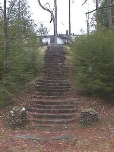 Steps leading to the Wonderland Hotel from the train tracks before it collapsed.  Google Image Result for http://www.ghosttowns.com/states/tn/images/Elkmont%2520Wonderland%2520Steps.jpg