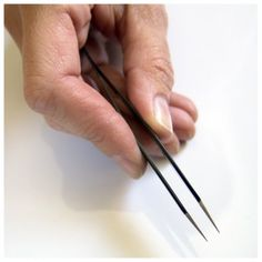 Here are some good tips on how to get great #tweezing results. Follow these simple steps and you can have the #hairless smooth skin you desire. Also, be sure to follow these maintenance tips to make your #tweezers last a lifetime. http://blog.sekiedge.com/easy-steps-to-get-professional-tweezing-results/