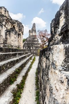 Tikal, Guatemala is home to some of the most impressive Mayan ruins in Central America. Central America, North America, Peru Ecuador, Adventure Aesthetic, Chile, Belize City, World Travel Guide, Tikal, Mayan Ruins