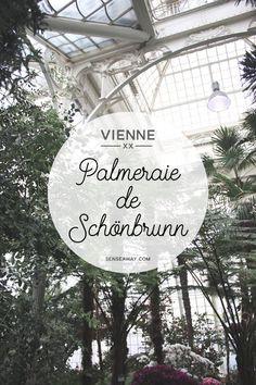 Visiter Vienne en 3 jours - Découvrez des adresses originales pour sortir des sentiers battus. Comme la Palmeraie du palais de Schönbrunn ! Balades, musées, cafés, restaurants et hôtels insolites. #vienne #vienna #wien #autriche #bonnesadresses #austria #cityguide #travel