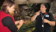 Celebrating Accessibility at the Aquarium: Join us on Saturday, December 1 as we celebrate accessibility at the Vancouver Aquarium Vancouver Aquarium, Animal Makeup, Local Events, December, Join, The Incredibles, Celebrities, Celebs, Famous People