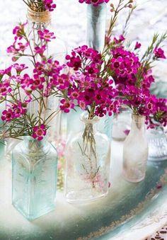 IML, roseromantic:  ...