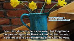 L'Astuce Pour Faire Durer les Fleurs en Vase Plus Longtemps.