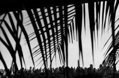 Josef Koudelka. NYC 2000