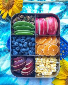 Planning for an afternoon filled with sports practices and music lessons? Our is the perfect companion, and is large enough for siblings or friends to share. packed: 🍎apple 🍊small mandarins 🌽corn 💚snap peas and pistachios 🔵blueberries 💜🍑plum Lunch Meal Prep, Healthy Meal Prep, Healthy Snacks, Healthy Recipes, Healthy Breakfasts, Protein Snacks, Detox Recipes, High Protein, Healthy School Lunches