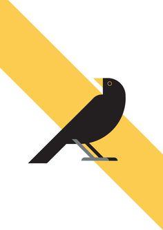 Blackbird illustration by GA Studio