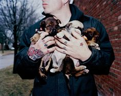 City of Strays: Detroit's Epidemic of 50,000 Abandoned Dogs -  As the city failed and its people fled, the animals took over. One man comes to the rescue. Dan Carlisle.