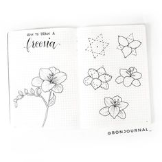 How to draw beautiful flower doodles in your bullet journal! These easy flower drawing tutorials will have you doodling flower patterns all over your bujo. Easy Flower Drawings, Flower Drawing Tutorials, Flower Sketches, Easy Drawings, Flower Drawing Tutorial Step By Step, How To Draw Flowers Step By Step, Learn To Draw Flowers, Flower Step By Step, Botanical Line Drawing