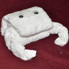 Make Towel Animals — Step-By-Step Towel Folding Guides
