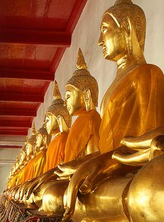 Buddhas Wat Pho temple Bangkok, Thailand, via Flickr.  (Rows of Buddha figures are a common sight at Wats throughout Thailand. These happen to be at one of Thailand's most famous Wats,Wat Pho in Bangkok.)