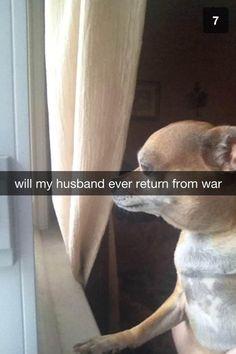 The best snapchat I've seen - Imgur