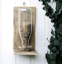 clear glass bottle bird feeder