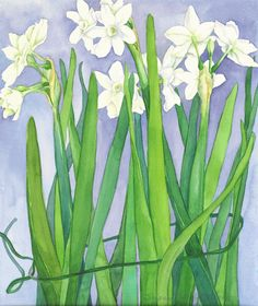 Suzanne Hull Wilson Floral Watercolors