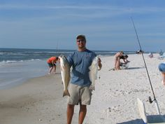 Enjoy fishing in the surf!  Lots of fun and you can enjoy it right in front of Barrier Dunes.  www.TheCapeEscape.com