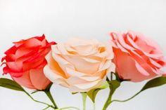 DIY Giant Crepe Paper Roses http://studiodiy.com/2013/05/06/diy-giant-crepe-paper-roses/