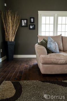 Living Room Paint Colors With Dark Hardwood Floors Designer Furniture 160 Best Floor Images Wool Area Rugs In Foyer Decorating Rooms